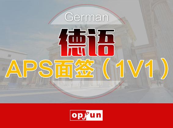 德语APS面签(1V1)
